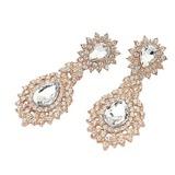 Attractive Alloy/Rhinestones Ladies' Earrings (011040321)