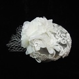 Prachtige Imitatie Parel/Netto garen Fascinators (042026166)