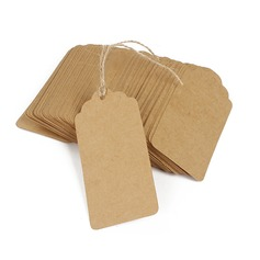 Классический прямоугольные крафт-бумаги Тэги (набор из 100) (051166362)