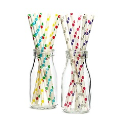 High quality paper Straws (Set of 25) (051036760)