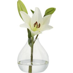 Pretty Glass Vase (128035746)